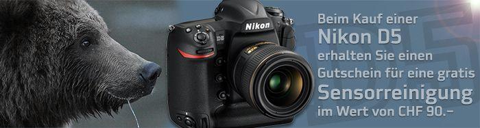 Nikon D5 Sensorreinigung