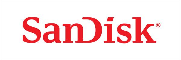 SanDisk bei HeinigerAG.ch
